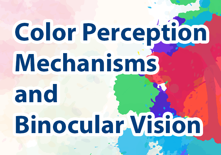 Color Perception Mechanisms and Binocular Vision
